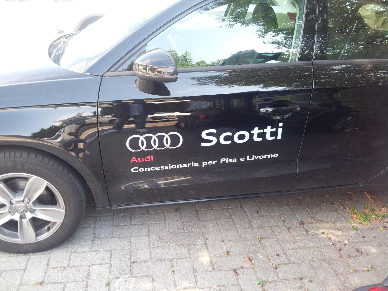 Pubblidea Pisa adesivi personalizzati  auto